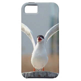 birds case for the iPhone 5