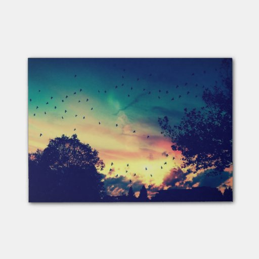 Birds Colourful Sky Nature Scenery Post-It Note