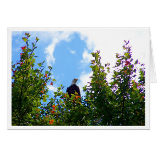 Bird's Eye View Stationery Note Card
