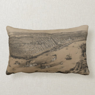 Birds' eye view of New Orleans from 1851 Throw Pillows