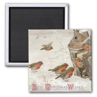 Birds Find Shelter in Lantern Vintage Christmas Square Magnet