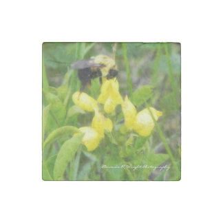 Bird's Foot Trefoil (Sweet Pea) Magnet