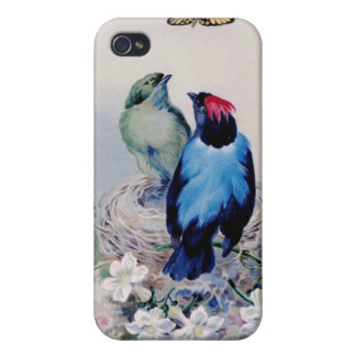 Birds in nest case iPhone 4 case