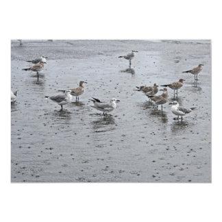 Birds in Water Card