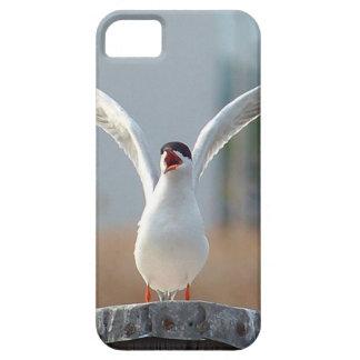 birds iPhone 5 cases