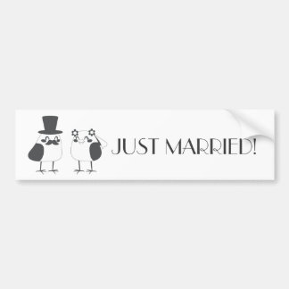 Birds Love Wedding Cake Bumper Sticker