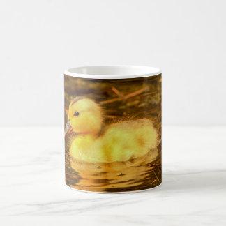 Birds Mug - Duckling,