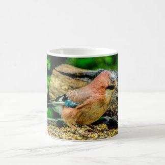 Birds Mug - Jay