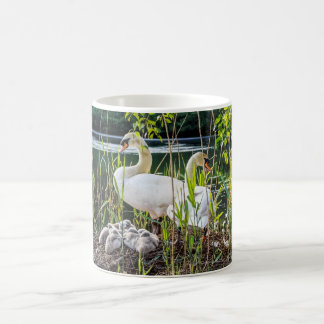 Birds Mug - Swans & Cygnets