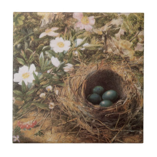 Birds Nest and Dogroses by Hill,Victorian Fine Art Ceramic Tile
