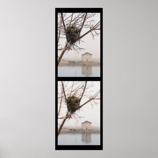 Bird's Nest Diptych Posters