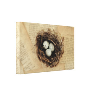 Bird's Nest With Eggs Modern Vintage Easter Canvas Print