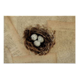Bird's Nest With Eggs Modern Vintage Easter Poster