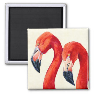 Birds Of A Feather - Greater Flamingos Magnet