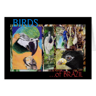 BIRDS of BRAZIL Fine Art Note Card