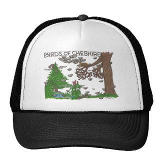Birds of Cheshire Hats