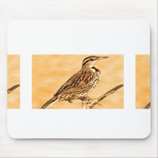 Birds of Ontario, Canada  Children Kids Zoo Wild Mouse Pad