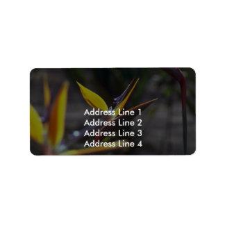 Birds Of Paradise Address Label
