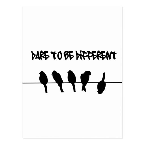 Birds on a wire – dare to be different post card