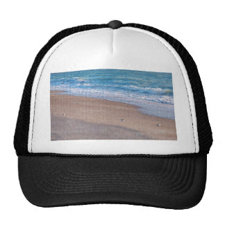 birds on beach crackle sea shore florida mesh hat