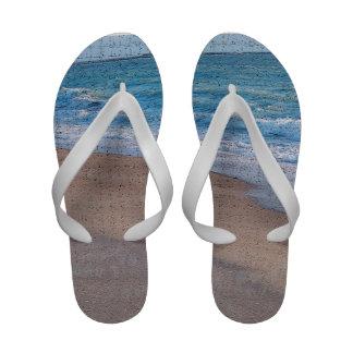 birds on beach crackle sea shore florida sandals