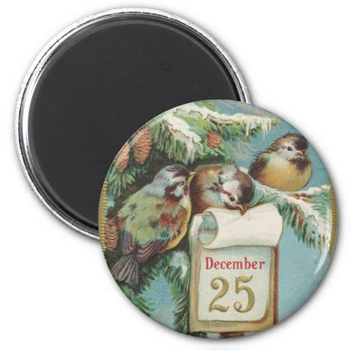 Birds on Decemeber 25th Refrigerator Magnets