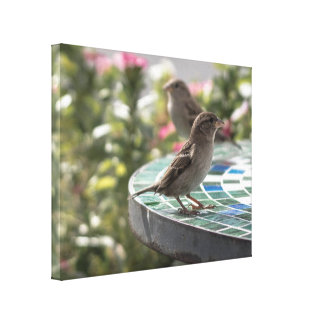 Birds on Table Canvas Print