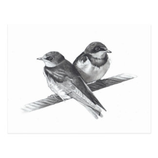 BIRDS ON WIRE BABIES PENCIL ARTWORK POST CARD