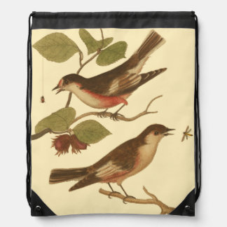 Birds Perched on Branches Eating Insects Backpacks