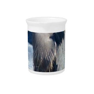birds pitcher