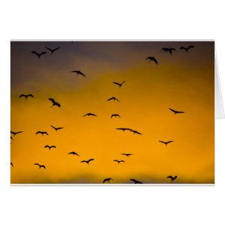 Birds Soaring Greeting Card