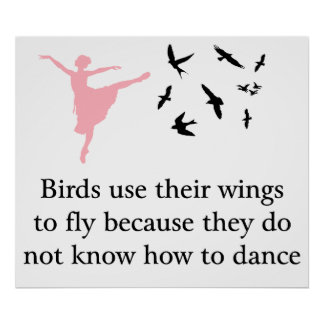 Birds use their wings to fly print / poster