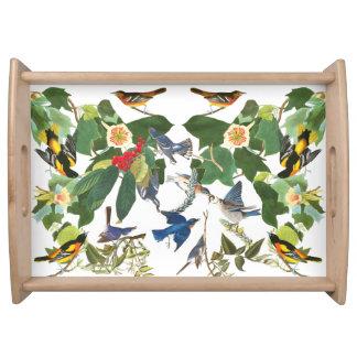 Birds Wildlife Animal Collage Serving Tray