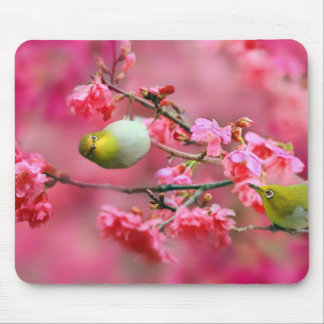 Birds with tree mouse pad