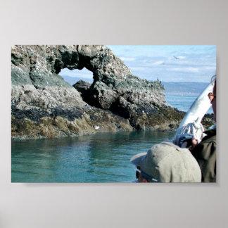 Birdwatching at Gull Island Poster