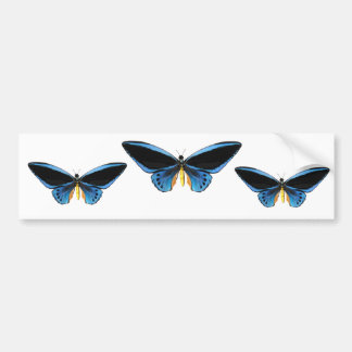 Birdwing Butterfly Bumper Sticker