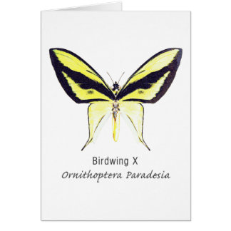 Birdwing X Butterfly with Name Greeting Card