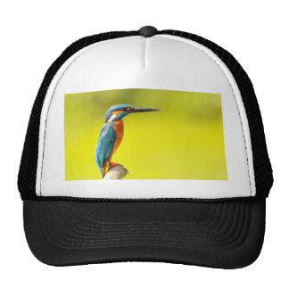 birdy bird boo valantines day cap