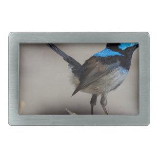 birdy birdy boo belt buckles