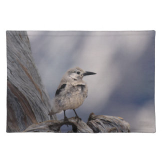 birdy love placemat