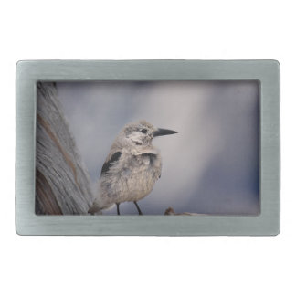 birdy love rectangular belt buckles