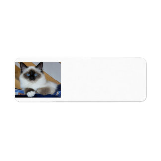 birman 2.png return address label