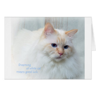 Birman Cat Card