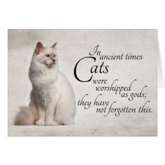 Birman Cat Notecard