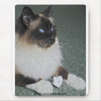 BIRMAN - RAGDOLL CAT Mousepad
