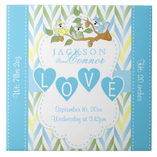 Birth Information - Pastel Blue Baby Squirrels Tile
