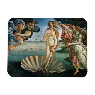 Birth of Venus by Botticelli Rectangle Magnets