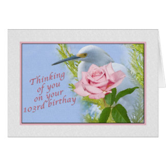 Birthday, 103rd, Snowy Egret and Pink Rose Card