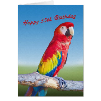 Birthday, 55th, Macaw Parrot Card