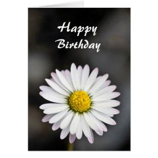 Birthday beautiful white and yellow daisy card